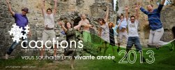 Voeux Co-actions 2013